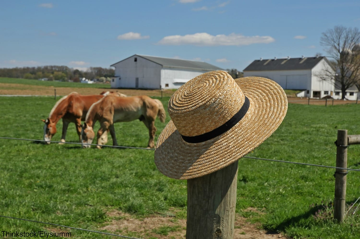 When is the best time to visit amish country pa best time to visit amish country pa aiddatafo Gallery