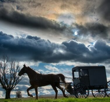 Lancaster PA Horse and Buggy